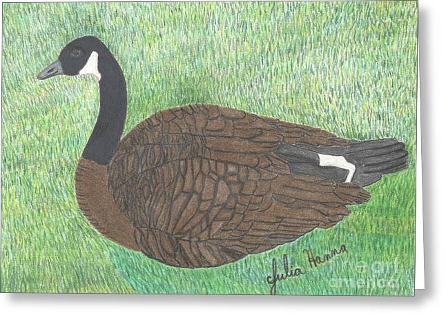 The Canadian Goose Greeting Card by Julia Hanna