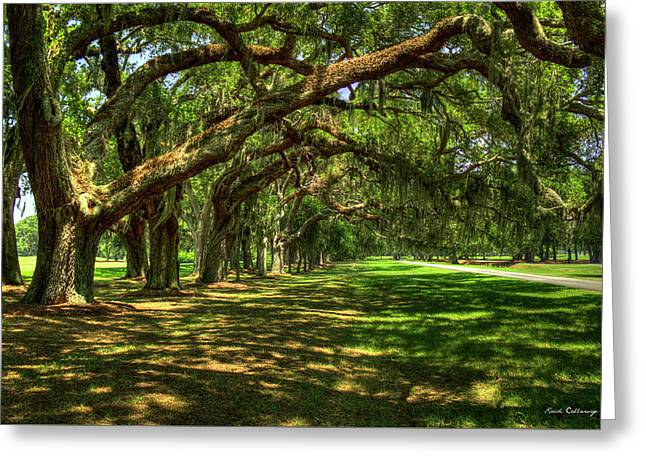 Cotton Club Greeting Cards - The Canopy Avenue Of Oaks St Simons Island Georgia Greeting Card by Reid Callaway