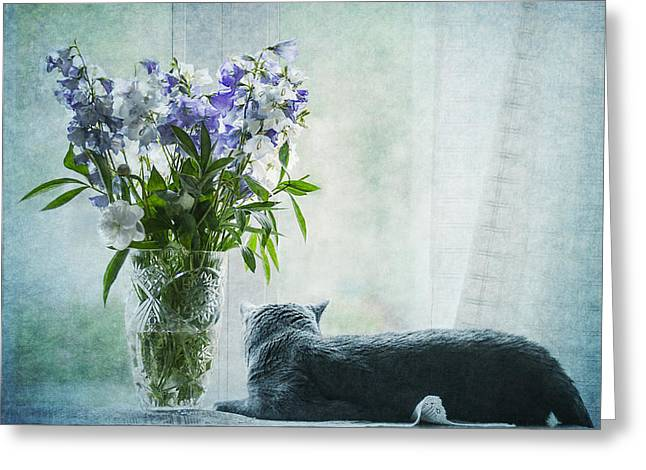 The Cat And The Vase Greeting Card by Maggie Terlecki
