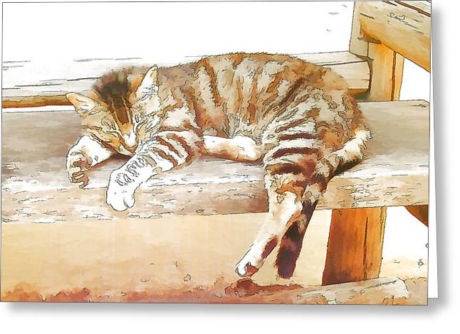 The Cat Is Back Greeting Card by Jan Hattingh