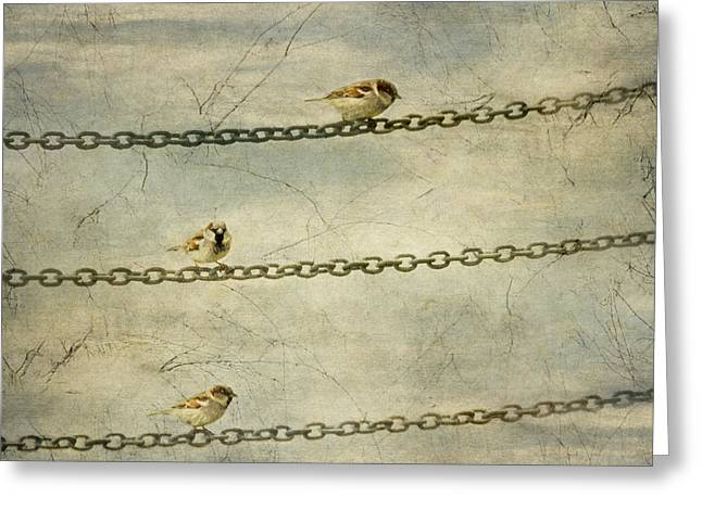 Chain Gang Greeting Cards - The Chain Gang Lookouts Greeting Card by Constance Fein Harding