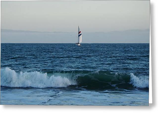 The Chardonnay Santa Cruz Sailboat Greeting Card by Marilyn MacCrakin