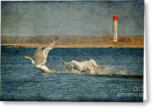 Anger Digital Greeting Cards - The Chase Is On Greeting Card by Lois Bryan