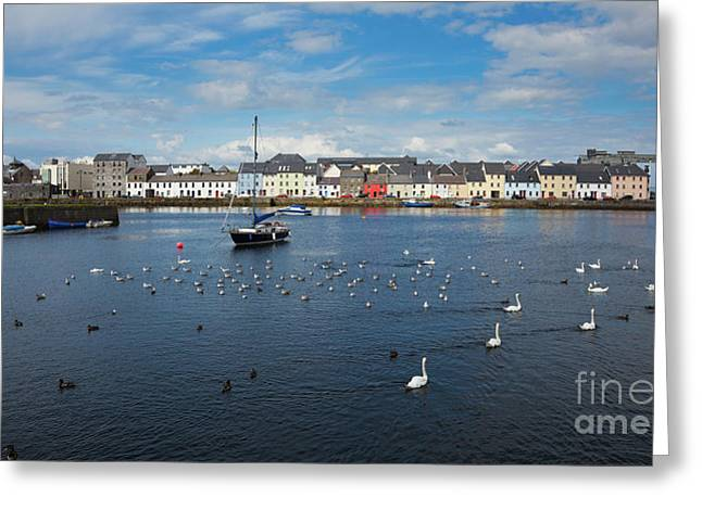 The Claddagh Galway Greeting Card by Gabriela Insuratelu