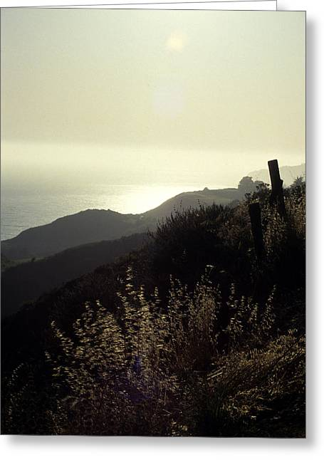 Big Sur Greeting Cards - The Coast Of California Greeting Card by Stacy Gold