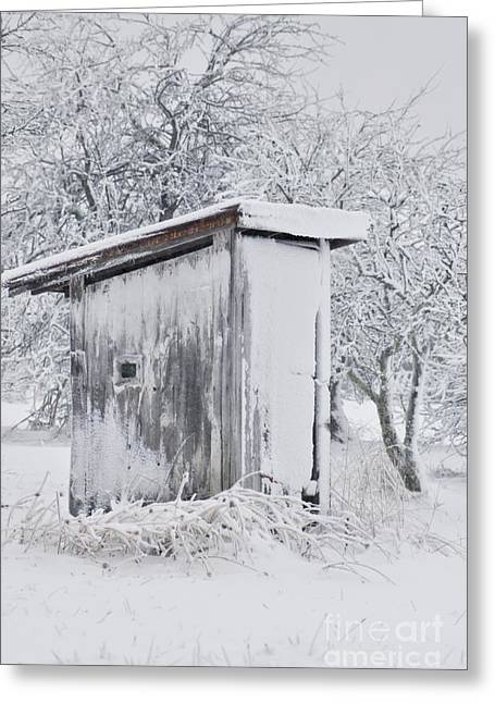 The Coldest Fifty Yard Dash Greeting Card by Benanne Stiens