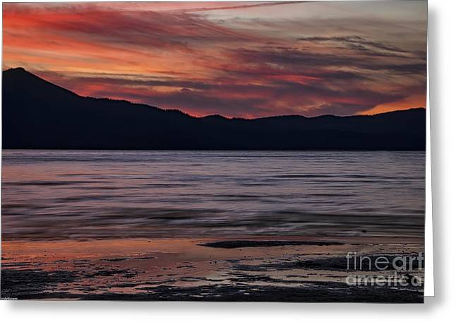 Reflecting Water Greeting Cards - The Color Of Dusk Greeting Card by Mitch Shindelbower