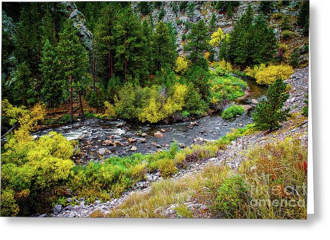 Mummy Range Greeting Cards - The Colorado Advantage Greeting Card by Jon Burch Photography