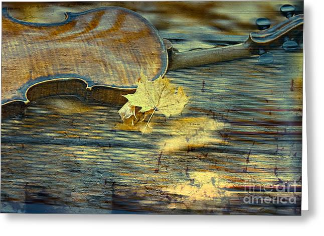 The Colors Of Autumn Greeting Card by Steven  Digman