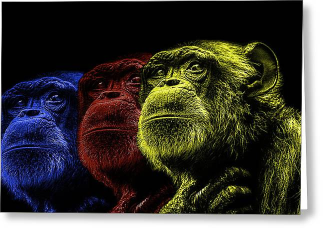 Contemporary Photographs Greeting Cards - The colours of Trepidation  Greeting Card by Paul Neville