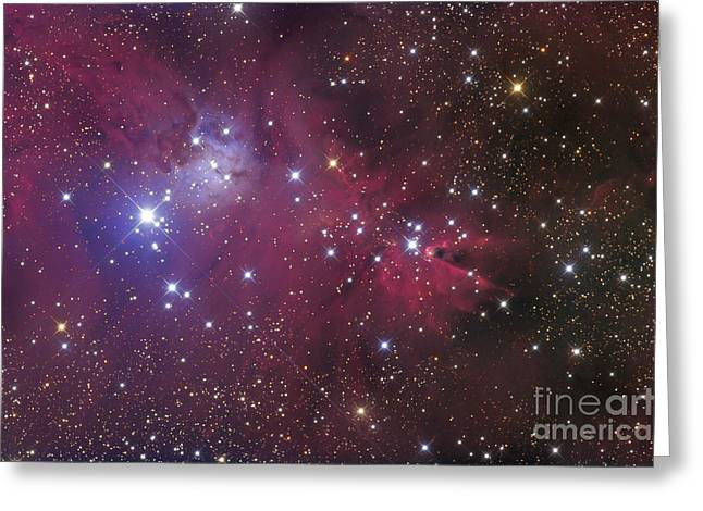 Interstellar Clouds Greeting Cards - The Cone Nebula Greeting Card by Roth Ritter