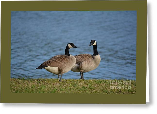 Beach Photography Greeting Cards - The Consultation... Greeting Card by Barbara Dalton
