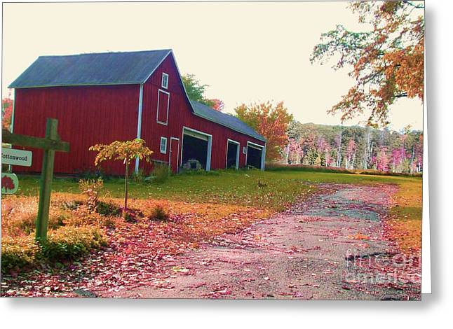 Autumn In The Country Mixed Media Greeting Cards - The Cottonwood in Fall Greeting Card by Desiree Paquette