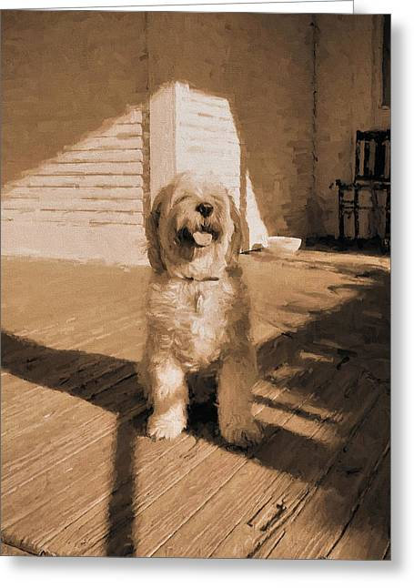 The Country Dog Greeting Card by JC Findley