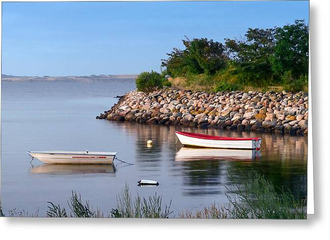 The Cove Greeting Card by Eric Sloan