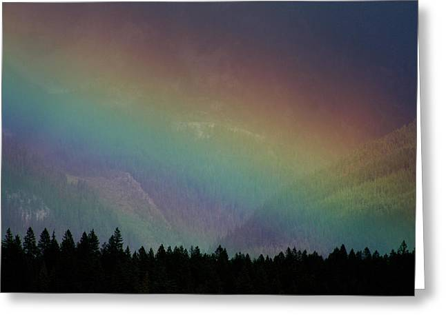 The Covenant  Greeting Card by Cathie Douglas