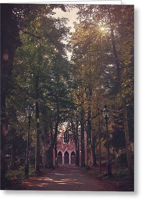 Swiss Photographs Greeting Cards - The Path Less Traveled Greeting Card by Carol Japp