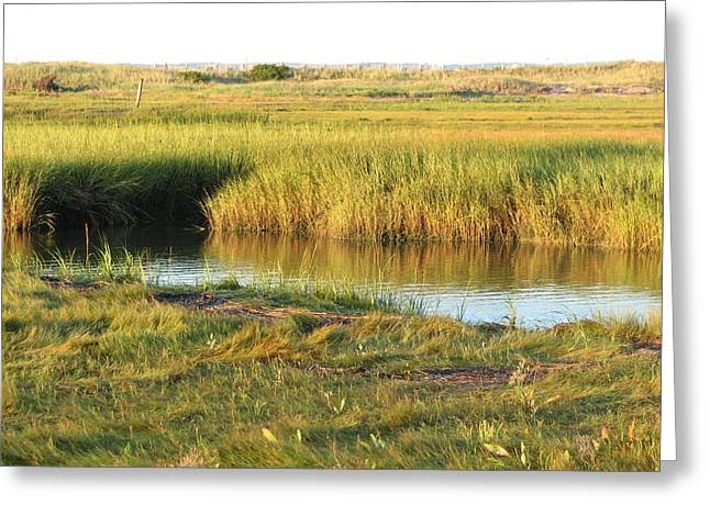 Gurnet Light Greeting Cards - The Creek Greeting Card by Brian Mazzoli