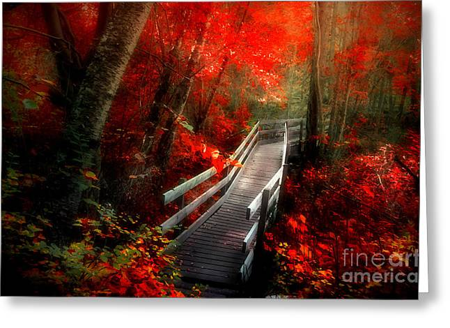 Foilage Greeting Cards - The Crimson Forest Greeting Card by Tara Turner