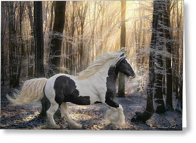 Intrigue Greeting Cards - The Crystal Morning Greeting Card by Terry Kirkland Cook