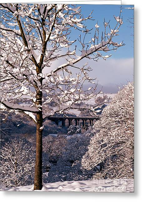 The Curving Viaduct Greeting Card by Joy Powell