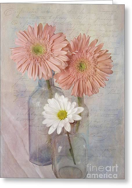 French Script Greeting Cards - The Daisies Greeting Card by Cindi Ressler