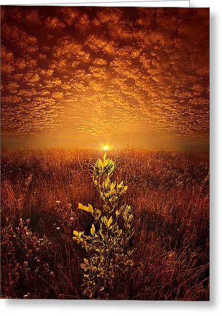 Life Line Greeting Cards - The Dance We Shared Greeting Card by Phil Koch