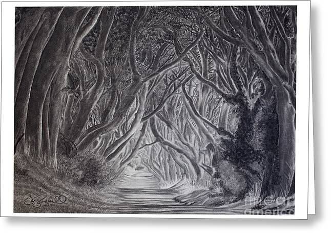 The Dark Hedges Greeting Cards - The Dark Hedges Greeting Card by Gary Rudisill