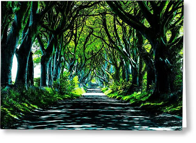 The Dark Hedges Greeting Cards - The Dark Hedges Greeting Card by Mark Hinds