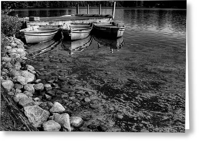 Boats At The Dock Greeting Cards - The Dock at Camp Russell Greeting Card by David Patterson