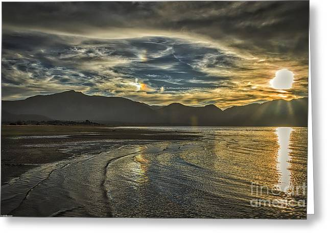 Beach Photography Greeting Cards - The Dog Days Of Summer Greeting Card by Mitch Shindelbower