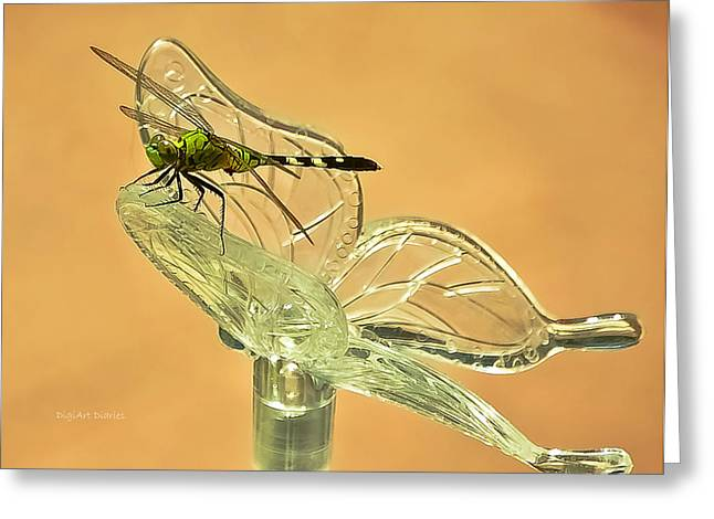 Olive Green Greeting Cards - The Dragonfly and The Butterfly Greeting Card by DigiArt Diaries by Vicky B Fuller
