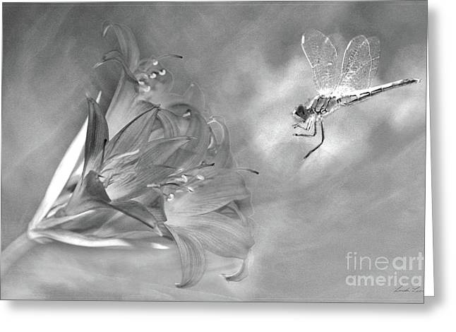 Lindaleesart Greeting Cards - The Dragonfly and the Flower Greeting Card by Linda Lees