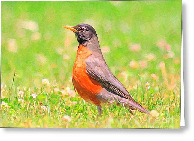 Robin Mixed Media Greeting Cards - The Early Bird Greeting Card by Wingsdomain Art and Photography