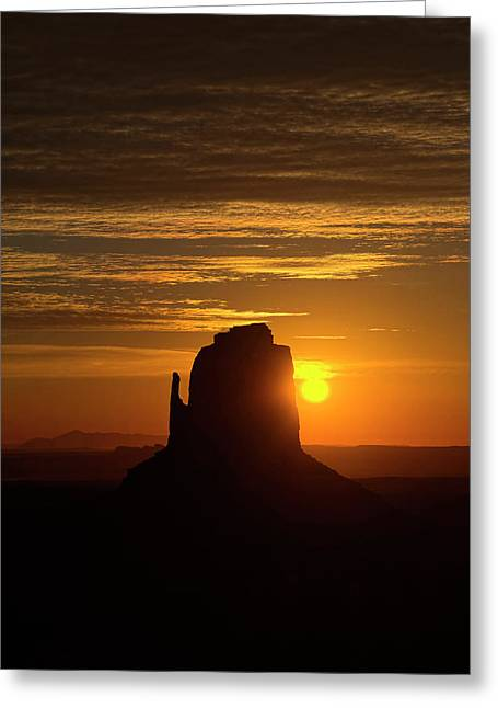 Lucinda Walter Greeting Cards - The Earth Awakes Greeting Card by Lucinda Walter
