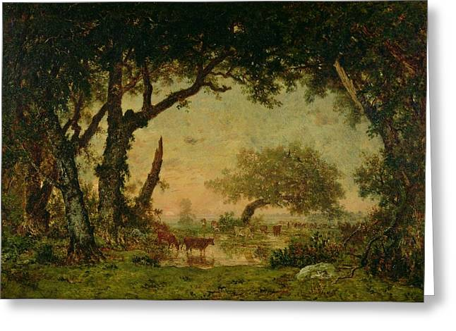 Evening Lights Paintings Greeting Cards - The Edge of the Forest at Fontainebleau Greeting Card by Theodore Rousseau