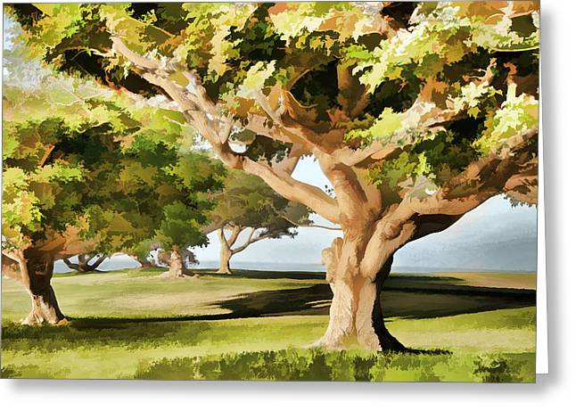 Ocean Vista Greeting Cards - The Elegance of Trees Greeting Card by Leda Robertson