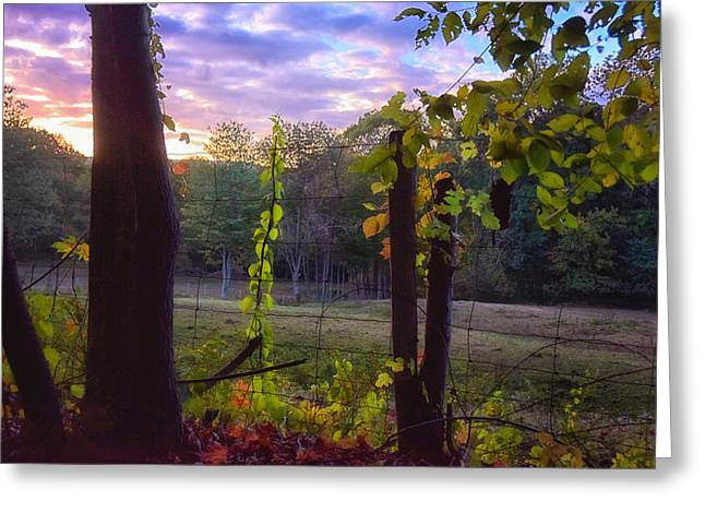 Barn Yard Greeting Cards - The End of the Day Greeting Card by Tricia Marchlik