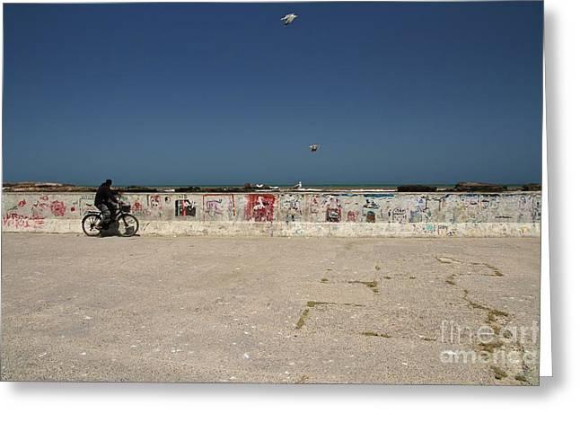 Panoramic Ocean Greeting Cards - The Esplanade 2 Greeting Card by Gail Palethorpe