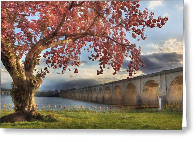 """""""riverfront Park"""" Greeting Cards - The Evening Run Greeting Card by Lori Deiter"""