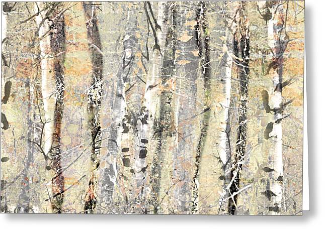 Distortion Greeting Cards - The Fading Forest Greeting Card by Tara Turner