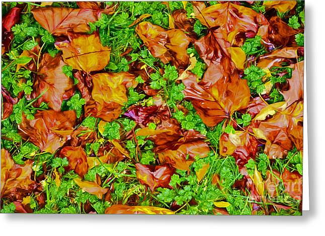Fall Photos Paintings Greeting Cards - The Fall of Summer II Greeting Card by Dan Carmichael