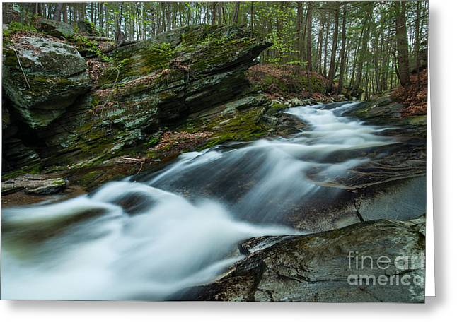 Roxbury Greeting Cards - The Falls at Tierney Greeting Card by JG Coleman