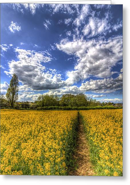 Farmers Field Greeting Cards - The Farm Footpath Greeting Card by David Pyatt