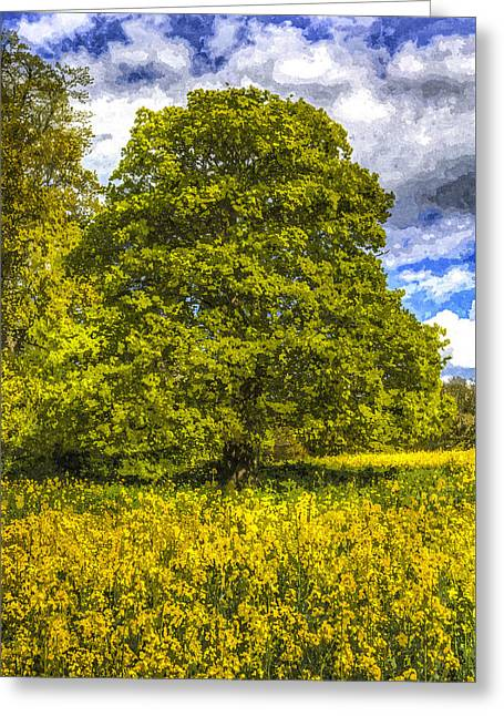 Farmers Field Greeting Cards - The Farm Tree Art Greeting Card by David Pyatt
