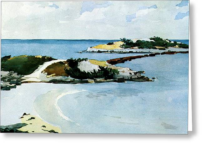 Ocean Shore Drawings Greeting Cards - The Favorite Greeting Card by Winslow Homer