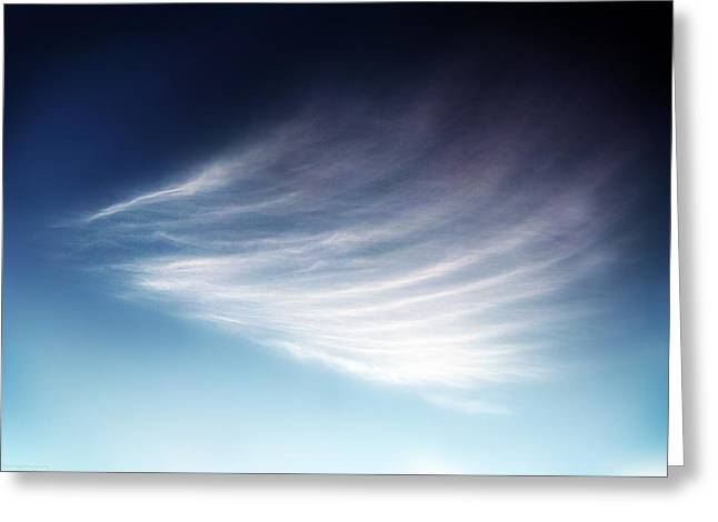 Himmel Greeting Cards - The feather Greeting Card by Philippe Meisburger