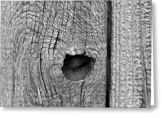 The Fence That Sleeps Greeting Card by Douglas Barnett