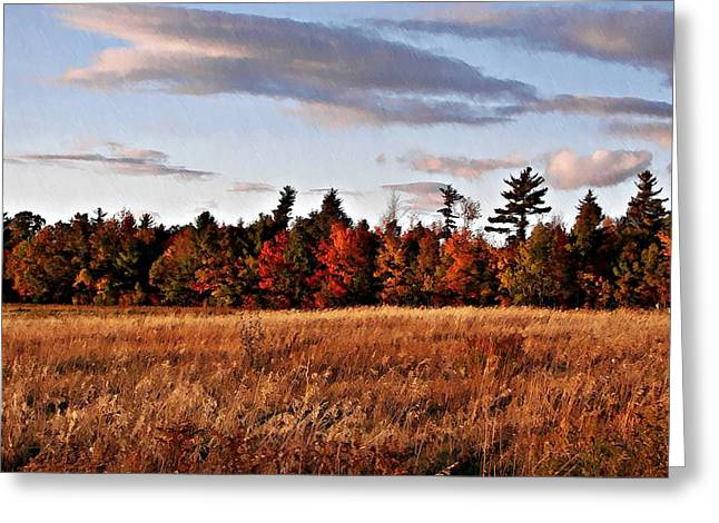 The Field At The Old Farm Greeting Card by Joy Nichols