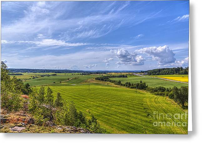 Vibrant Green Greeting Cards - The Field Scenery Greeting Card by Veikko Suikkanen